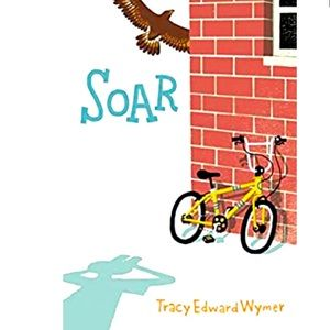 """🌈3/$20 """"Soar"""" by Tracy Wymer *hardcover book"""